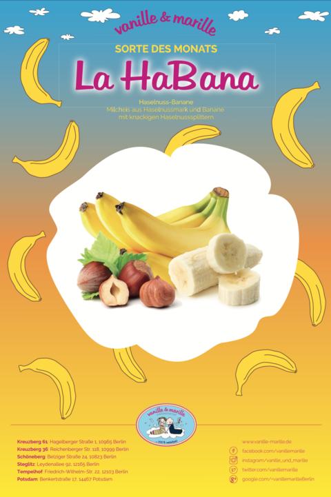 La HaBana – Haselnuss-Banane