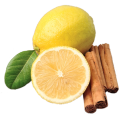 vanille & marille (Eis aus Berlin): Zitrone-Zimt