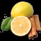 vanille & marille Sorte: Zitrone-Zimt (Eis aus Berlin)